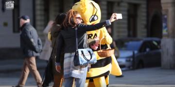 Bełchatowska pszczoła na wrocławskim Rynku